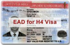 H4 EAD Rule